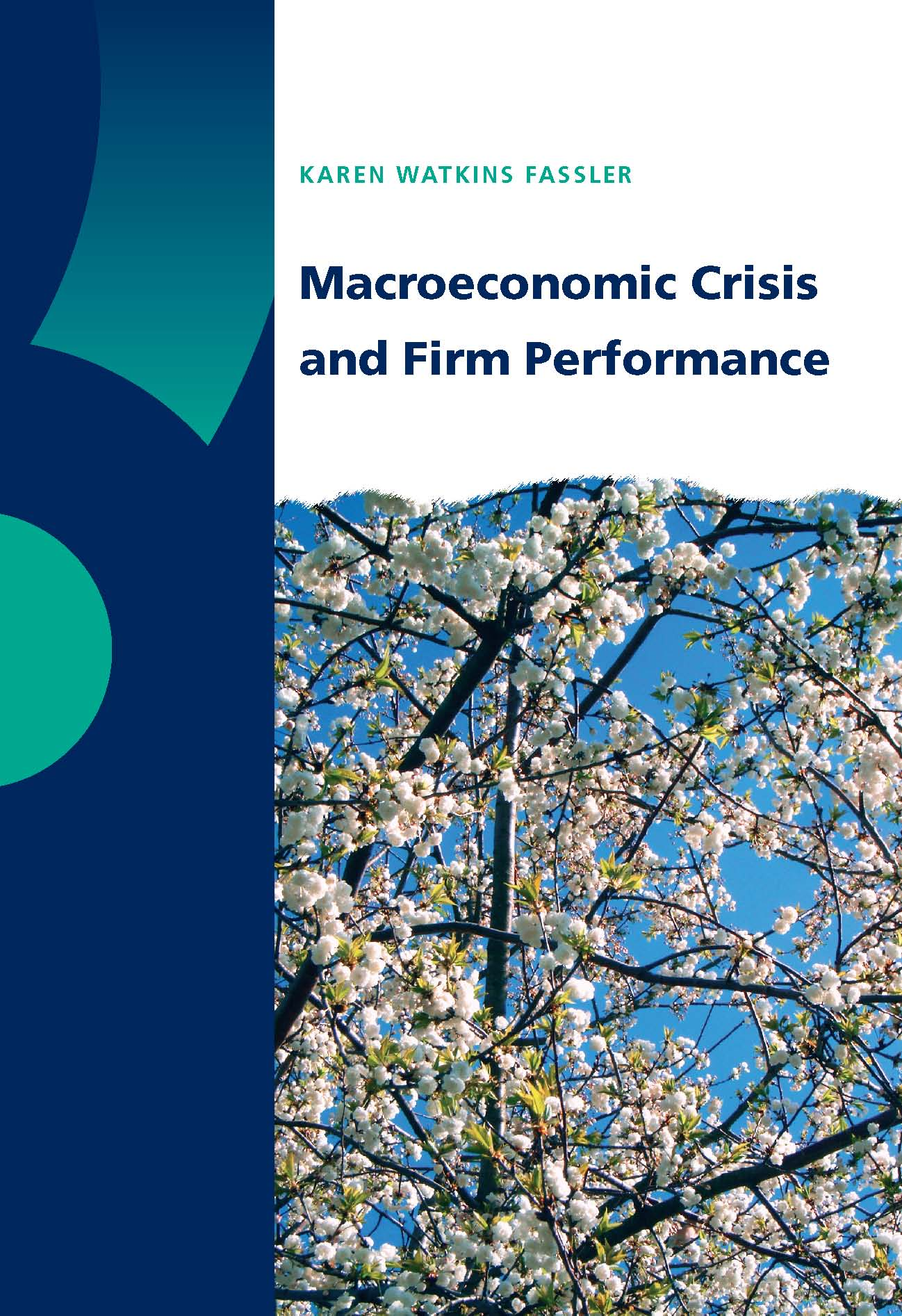 Macroeconomic Crisis and Firm Performance