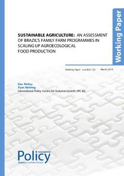 UNDP Working Paper