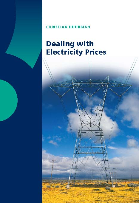 Dealing with Electricity Prices